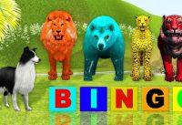 BINGO dog song with zoo animals ll Cartoon Animation Rhymes amp fun for kids 200x137 - BINGO dog song with zoo animals ll Cartoon Animation Rhymes & fun for kids