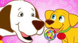 Best Nursery Rhymes amp Kids Songs Collection Hide and Seek with Puppies Diez Perritos HooplaKidz 300x165 - Best Nursery Rhymes & Kids Songs Collection | Hide and Seek with Puppies -Diez Perritos | HooplaKidz