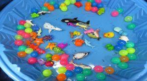Children Sea Animals for Kids Toys for Kids Learn Sea Animal Names 300x165 - Children Sea Animals for Kids Toys for Kids Learn Sea Animal Names