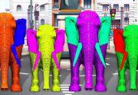 Colors Elephant finger family Rhymes Elephnat finger elephant finger song kids Toddlers 200x137 - Colors Elephant finger family Rhymes # Elephnat finger elephant finger song kids Toddlers