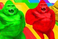 King Kong Learn Colors Learn Animals Cartoon Water Sliders Nursery Rhymes for Kids 200x137 - King Kong Learn Colors Learn Animals Cartoon Water Sliders Nursery Rhymes for Kids