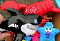 Learn Sea Creatures Names Box of Sea Animals Toys For Kids 200x137 - Learn Sea Creatures Names ! Box of Sea Animals Toys For Kids :)