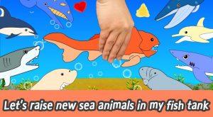 maxresdefault 44 300x165 - [EN] Let's raise new sea animals in my fish tank! animals animation for kids, animal namesㅣCoCosToy